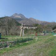 広々土地から広大な美しい由布岳が一望です